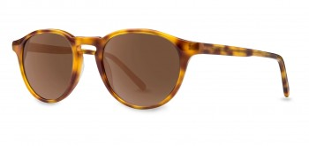 FILTRATE - BEACON HONEY TORT/BRONZE POLARIZED