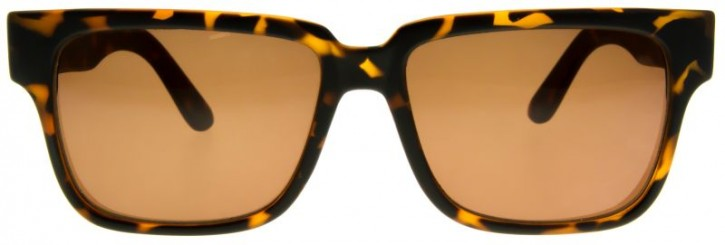 FILTRATE - SUNDAY MATTE TORT/BRONZE LENS ONE SIZE
